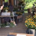八ヶ岳 Flowers for Lena ドライフラワー制作・販売、カフェ、雑貨ショップ