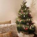 フレッシュモミのクリスマスツリー