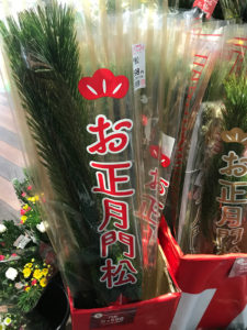 お正月飾りの松