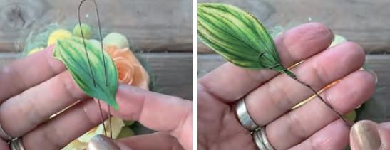 ルスカスの葉のワイヤリング
