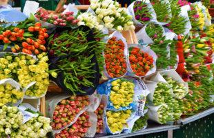 花市場のイメージ