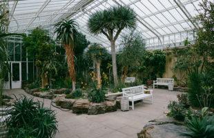 植物園は閉園